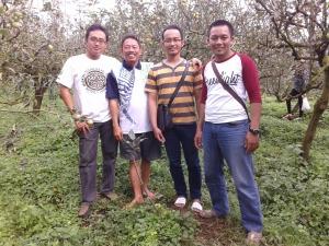 foto di kebun apel